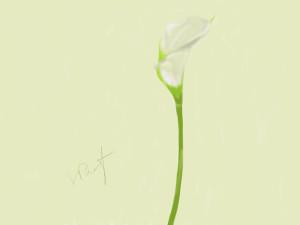 Flower_01_4_15